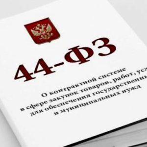 аукционы 44 фз, тендеры 44 фз, закупки СПб, выиграть тендер